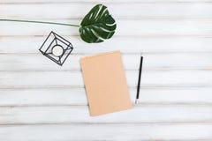 Eine Anlage, ein Notizblock und ein Bleistift Lizenzfreie Stockfotos
