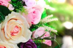 Eine Anordnung für Frühlingsrosen blüht für Designpostkarten, Broschüre, Valentinsgruß auf Sonnenuntergangzeit stockbilder