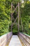 Eine Ansicht über die umgekehrte Bowstring-Brücke über dem Rogenfluß im Roe Valley-Nationalpark nahe Limavady in der Grafschaft L Stockfoto