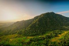 Eine Ansicht über einen Hügel-panoramischen Sonnenaufgang in den Tropen lizenzfreie stockbilder