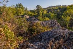 Eine Ansicht der Flusssteine umgeben durch einen dichten Wald in den Strahlen des Sonnenaufgangs Stockfotos