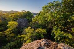 Eine Ansicht der Flusssteine umgeben durch einen dichten Wald in den Strahlen des Sonnenaufgangs Lizenzfreies Stockbild