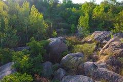 Eine Ansicht der Flusssteine umgeben durch einen dichten Wald in den Strahlen des Sonnenaufgangs Stockfoto