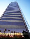 Eine Ansicht der Palmen-und Gebäude-Reflexionen Stockbilder