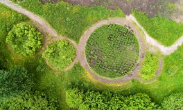 Eine Ansicht der runden Blumenbeete im Park im Sommer Stockbilder