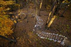 Eine Ansicht der Schritte des Herbstes stockbild
