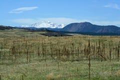 Eine Ansicht der Spiess-Spitze über dem Grasland Lizenzfreie Stockbilder