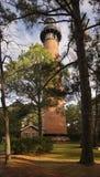 Eine Ansicht des Currituck-Strand-Leuchtturmes durch die Bäume Lizenzfreie Stockbilder
