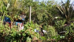 Eine Ansicht des Dorfs in Papua-Neu-Guinea stock footage