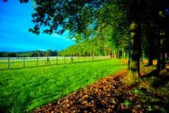 Eine Ansicht des Parks Lizenzfreies Stockfoto