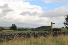 Eine Ansicht in die Felder Lizenzfreies Stockfoto