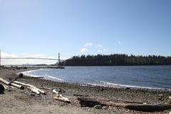 Eine Ansicht einer Bucht von einem Strand mit Treibholzsand und -felsen lizenzfreie stockfotografie