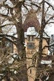 Eine Ansicht eines Glockenturms durch einen jahrhundertalten Baum Sinai, Rumänien lizenzfreies stockbild