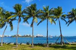Eine Ansicht vom Hafen von Miami stockbild