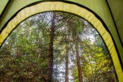 Eine Ansicht vom Zelt im Wald Stockfotos