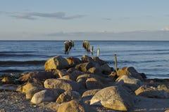 Eine Ansicht von alten Wellenbrecherposten auf Strand, Riga-Bucht, Jurmala, Lettland stockfotografie