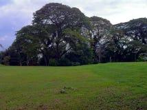 Eine Ansicht von Bukit Melawati stockbild
