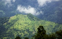 Eine Ansicht von grünen Hügeln von shelpu Hügeln, Westbengalen lizenzfreie stockfotos