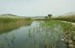 Eine Ansicht von See Hula Galille israel stockbild