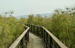 Eine Ansicht von See Hula israel lizenzfreie stockfotografie
