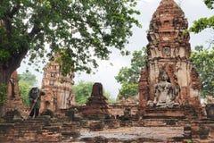 Eine Arbeitskraft, die den Boden von Wat Maha That, Ayutthaya fegt Lizenzfreie Stockfotografie
