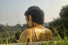 Eine ausgezeichnete goldene Statue von Buddha in den Bergen, Taiwan Stockfoto