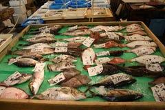 Eine Auswahl der Fische am Tsukiji Fischmarkt Tokyo stockfotos