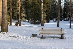 Eine Bank auf Schnee im Winterpark Lizenzfreie Stockfotografie