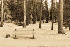 Eine Bank auf Schnee im Winterpark-Farbesepia Stockbild