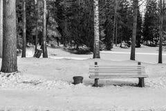Eine Bank auf Schnee im Winterpark-Monochromton Stockbild