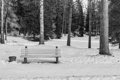 Eine Bank auf Schnee im Winterpark-Monochromton Lizenzfreie Stockfotos