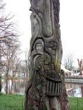 Eine Baum fotografie stock