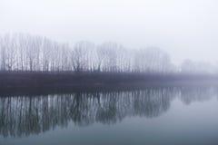 Eine Baumreihe dazu reflektiert sich im Fluss an einem nebeligen Tag Stockfotografie