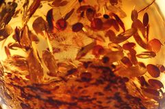 Eine bernsteinfarbige Steinnahaufnahme lizenzfreie stockbilder