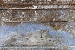 Eine Betonmauer nützlich als Hintergrund umfasst mit Moos Stockfotografie
