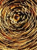 Eine Bewegung des gelben Lichtes Lizenzfreies Stockbild