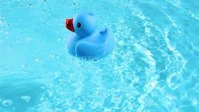 Eine blaue Gummiente ist einfach, auf das haarscharfe Wasser zu schwimmen stock video footage