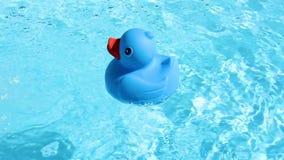 Eine blaue Gummiente schwimmt in das Bild vom Recht stock video