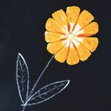 Eine Blume gemacht von der Kreide und von einer frischen Orange stockbilder