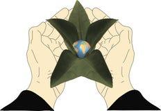 Eine Blume halten, die von der Erde wächst vektor abbildung