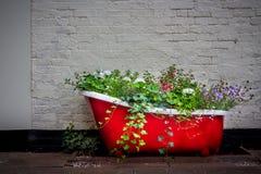 Eine Blumengusseisenbadewanne lizenzfreie stockfotos