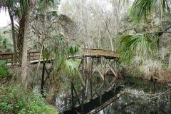 Eine Brücke auf Hillsborough-Fluss Lizenzfreies Stockfoto