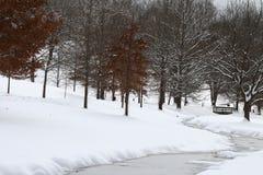 Eine Brücke zur Winter-Landschaft stockbilder
