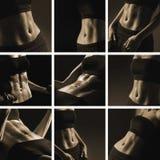 Eine Collage von neun bildete weibliche Karosserien im Sepia aus stockfotografie