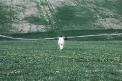 Eine einsame weiße glühende Zahl eines Mannes geht durch ein düsteres GR stockfotos