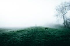 Eine einzige Zahl silhouettiert gegen hellen weißen Nebel in der Landschaft lizenzfreies stockbild