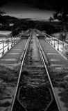 Eine Eisenbahn über dem Fluss shannon Lizenzfreies Stockbild