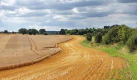Eine englische landwirtschaftliche Landschaft in den Chiltern Hügeln Stockfotografie