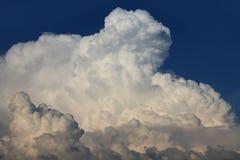 Eine enorme weiße Kumuluswolke über dem blauen Himmel, ein kleiner Fliegenvogel des schwarzen Flecks Stockbilder