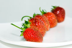 Eine Erdbeere Stockfotografie